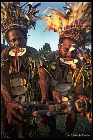 Traditional Sing Sing Ceremony, Kairiru Island, Papua New Guinea.