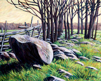 The Rocky Fence Line- SOLD